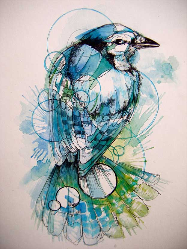 Abby Diamond's Beautiful Ink And Watercolour Birds
