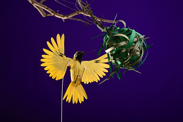 Andy Singleton's Intricate Paper Bird Installations For Liberty And Hermés