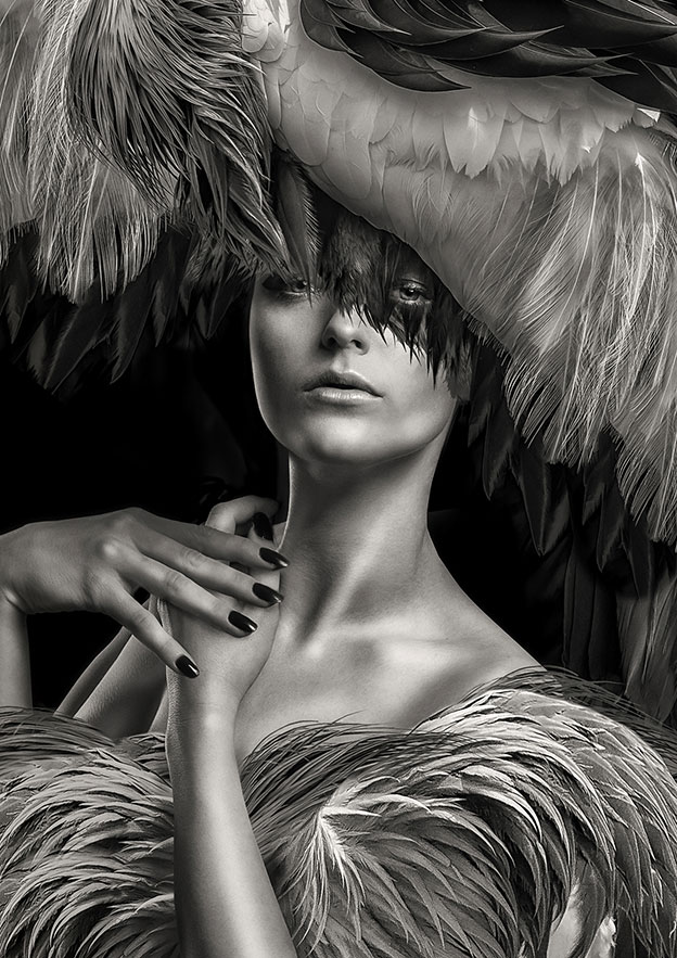 Lee Howell's Photographs Where Feather Meets Beauty And Fashion