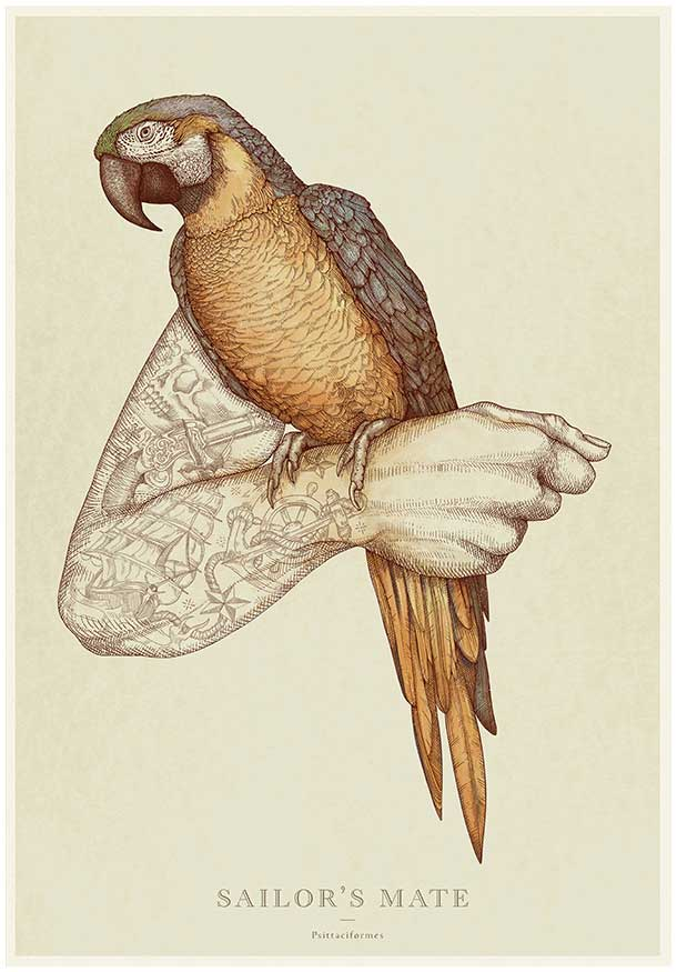 Detailed Etchings Of Birds That Show Their Relationship With Man