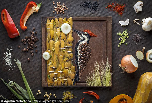 Food Stylist Creates Incredibly Detailed Bird Illustrations