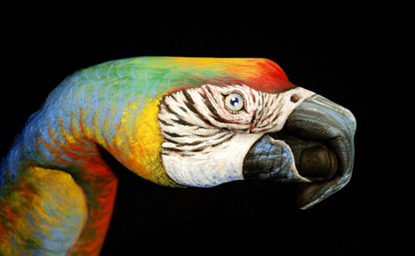 Amazing Bird Body Art On Hands