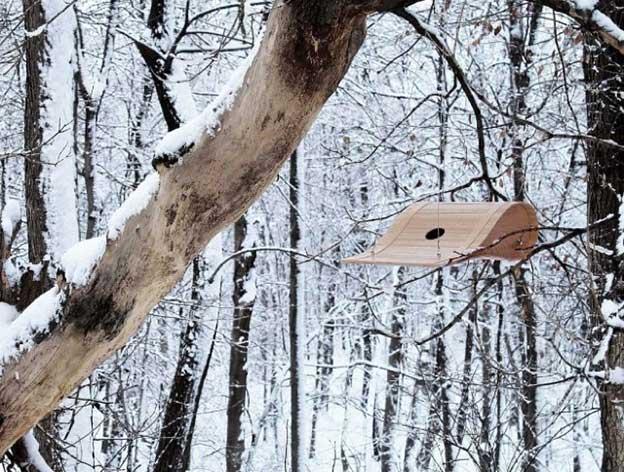 Ryan Bruxvoort's Sculptural Modern Birdhouse
