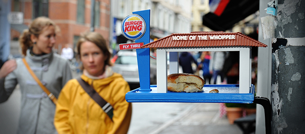 Burger King Bird Feeder For Birds Eating On The Fly