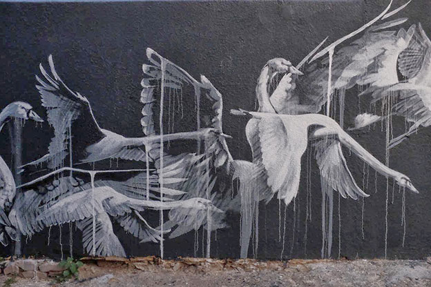 Faith47's Ethereal Mural Of Swans On The Streets Of Cape Town