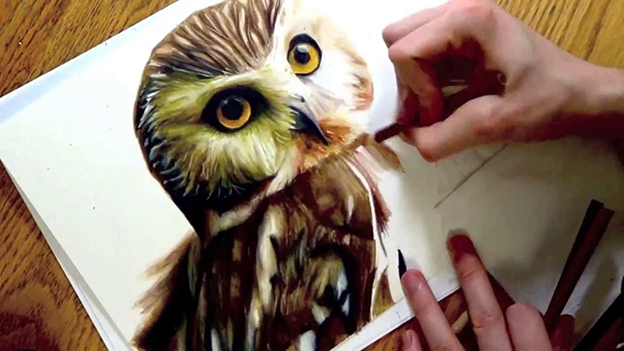 Heather Rooney's Realistic Drawing Of An Owl