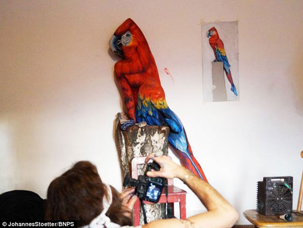 Johannes Stoetter's Remarkable Parrot Body Painting