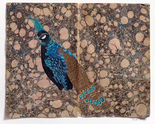 Stylised Paintings Of Birds On Vintage Ledgers