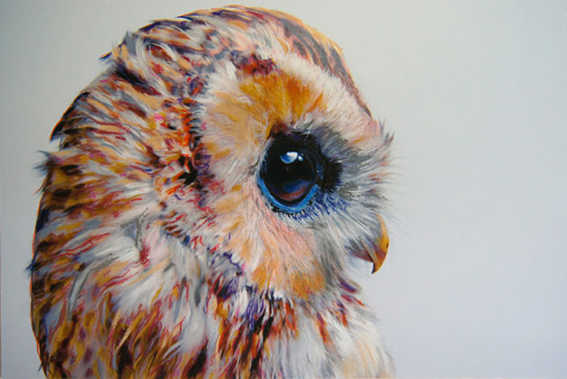 Pretty Pastel Owl Illustrations By John Pusateri