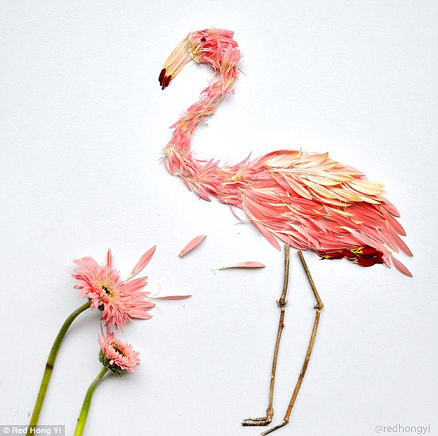 Beautiful Images Of Birds Created From Flower Petals