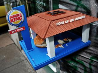 Burger King Bird Feeder For Birds Eating On The Fly