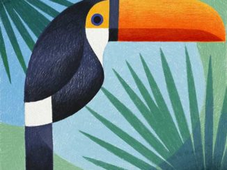 Samy Halim's Geometric Birds Created On An iPod Pro