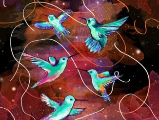 Hummingbird Textile Pattern Designed By Irene Feleo For Care Australia