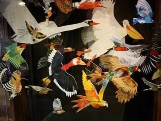 Flock Of Birds Collage For Yorkshire Sculpture Park