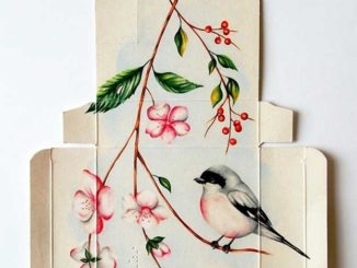 Sandra Landeta's Pretty Paintings Of Birds On Unfolded Medicine Boxes