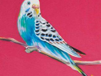 Sarah Graham's Colourful Acrylic Paintings Of Birds