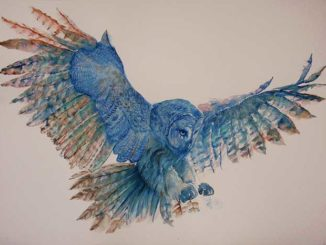 Ethereal Watercolour Paintings Of Owls By Marina Mayer